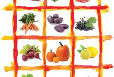 The Need for Colors in the Food Industry